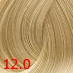 Concept Profy Touch 12.0 экстра светлый блондинй