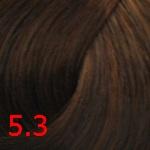 Concept Profy Touch 5.3 золотистый темно-русый