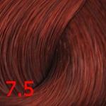 Concept Profy Touch 7.5 ярко-красный