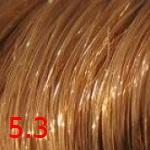 5.3 Золотистый темно-русый
