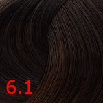6.1 Темный пепельный блонд