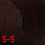 5-5 светло-коричневый золотистый