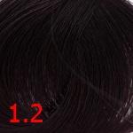1.2 Фиолетово-черный