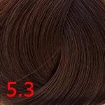 5.3 Светлый золотисто-коричневый