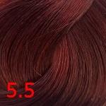 5.5  Светло-коричневый махагон