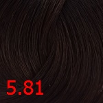 5.81 Светло-коричневый пепельный