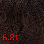 6.81 Коричнево-пепельный темный блонд